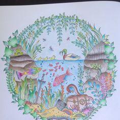 Floresta Encantada/Aquario/Johanna Basford