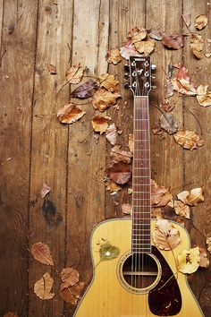 Guitar and Autumn Leaves.