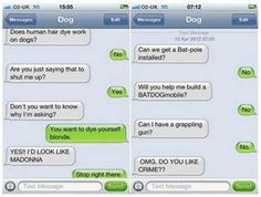 Dog texts-Human hair dye/BATDOG Funny Dog Texts, Funny Text Fails, Text Memes, Funny Text Messages, Stupid Funny Memes, Funny Facts, Funny Stuff, If Dogs Could Text, Conversation Images