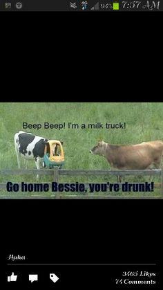 Dairy farm humor!!!!