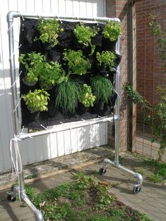 Hydroponic support screen made with Kee Klamp Fittings