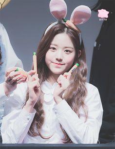 181102 Dongja Art Hall fan signing  #izone #wonyoung Kpop Girl Groups, Kpop Girls, Fan Signs, Cute Gif, The Wiz, Girl Crushes, Ulzzang, Cute Babies, Idol