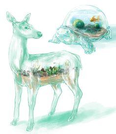 terrarium critters