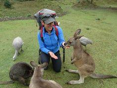 Monika Witkowska podczas swoich podróży / Fot. archiwum prywatne Moniki Witkowskiej Kangaroo, Animals, Baby Bjorn, Animales, Animaux, Animal, Animais
