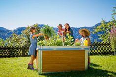 Gardenplaza - Im Hochbeet ganzjährig eigenes Obst und Gemüse anbauen - Garantiert aus ökologischem Anbau
