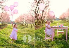 1st Birthday photo shoot idea... Must do this!  I have an orchard picked out, can't wait till spring!