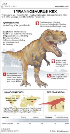 Dinosaur Profile: Tyrannosaurus Rex. Don't think there will be any dinos in the petting zoo but good example of info & layout