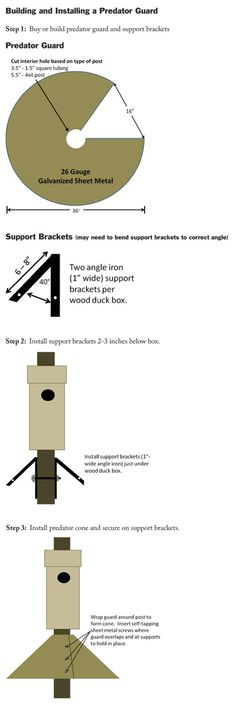 Good Plans For Creating A Predator Guard For My Wood Duck