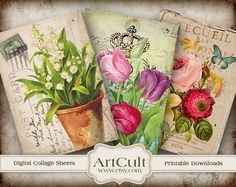 What IS it about botanical art on a printed background that makes me salivate?