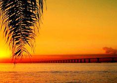 bridge over untroubled water #sunset #rio