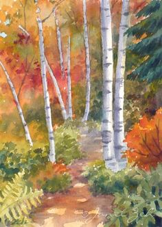 Zeh Original Art Blog Watercolor and Oil Paintings: Path with Birches Original Watercolor Painting