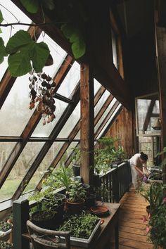 maison en bois jardin d'hiver et légumes usine