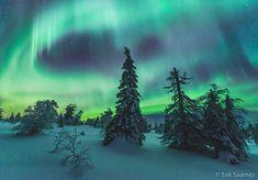 Finland, Winter Wonderland, Northern Lights, Beautiful Places, Illustration, Nature, Travel, Spaces, Naturaleza