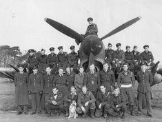 "https://flic.kr/p/23gredp | Aircraft - 1945, Allemagne, Gogh (Goch), Les pilotes du No. 174 Squadron RAF sur chasseur-bombardiers Hawker ""Typhoon"" prennent la pose"