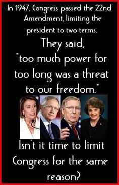 Term Limits Now! They are getting suspiciously rich and out of touch w average American life. Political Quotes, Political Views, Out Of Touch, Conservative Politics, Fiction, Reality Check, God Bless America, Thought Provoking, We The People