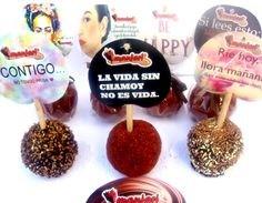 www.chocolatemanjarifresas.mx