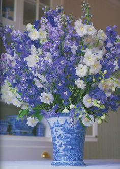 Beautiful blue & white flowers in vase