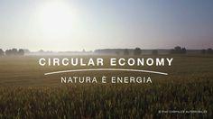 Circular Economy: l'approccio naturale al valore sostenibile