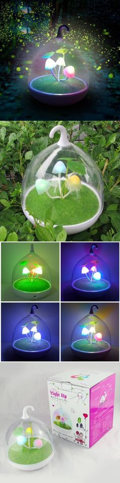 Indoor Lights | Rechargeable Mushroom LED Cage Night Light with Touch Sensor $10.40