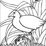 Augmented reality coloring pages ~ Augmented Reality on Pinterest
