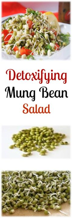 Sprouted Mung Bean Salad with Parsley. Will have to give this a try, I like sprouted mung beans.