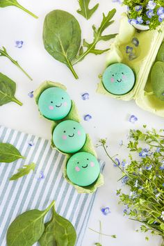 Color Easter eggs naturally and design them very easily Easter Tree, Easter Bunny, Easter Recipes, Easter Ideas, Diy Ostern, Easter Traditions, Coloring Easter Eggs, Easter Party, Easter Baskets