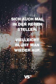 Visual Statements®️️️️️️ Sprüche/ Zitate/ Quotes/ Motivation/ Sich auch mal in den Regen stellen. Vielleicht blüht man wieder auf.