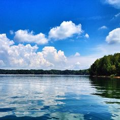 Tims Ford Lake in Winchester, TN (just a little south of Nashville)