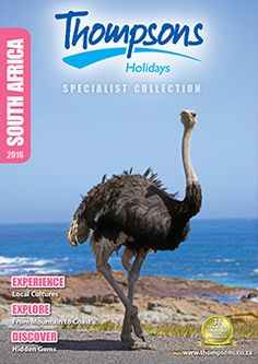 Thompsons Holidays is your destination specialist. Check out our brochures! Top Destinations, Brochures, Winter Season, South Africa, Explore, Holiday, Collection, Winter Time, Vacations