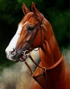 California Chrome art