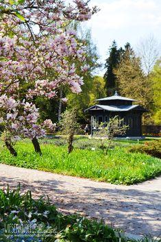 Botanischer Garten Augsburg Beleuchtung Abend | Die 55 Besten Bilder Von Botanischer Garten Augsburg