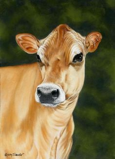 Jersey Queen - Cow Art and More