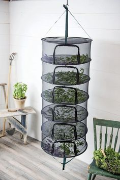 t Herb Drying Rack Stack!t Herb Drying Rackt Herb Drying Rack awesome made mine out of old picture frames & mesh.Learn how to dry medicinal herbs with this hanging dry rack for natural remedies and healing.Super useful hacks to dry herbs quickly & ea Hanging Drying Rack, Herb Drying Racks, Herb Rack, Organic Gardening, Gardening Tips, Vegetable Gardening, Flower Gardening, Gardening Books, Bucket Gardening