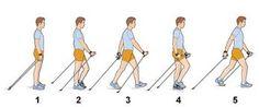 Resultat d'imatges de nordic walking