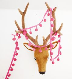 What i really want is this deer head~!