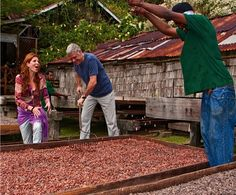 St. Lucia in the Caribbean: Luxury Travel Destination for Chocolate Lovers