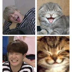 This is a Community where everyone can express their love for the Kpop group BTS Bts Memes Hilarious, Bts Funny Videos, Bts Boys, Bts Bangtan Boy, Namjoon, Taehyung, Jimi Bts, V Chibi, Park Jimin Cute