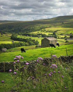 Yorkshire Dales - England; this looks like a lovely place for a respite