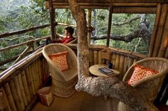 Staying above the world in a treehouse sounds like the ultimate vacation!