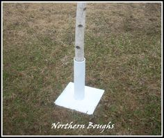 White Birch Wedding Chuppah Stands – Northern Boughs