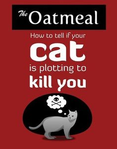 Book Review: How to Tell If Your Cat Is Plotting to Kill You by Matthew Inman
