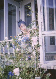 Photo album containing 66 pictures of IU Snsd, Kpop Profiles, K Pop Music, Cosmic Girls, K Idol, Love Poems, Korean Actresses, Korean Beauty, Asian Beauty