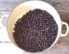 low sugar, no pectin saskberry jam
