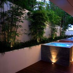 Landscape Above Ground Pool Surround Design, Pictures, Remodel, Decor and Ideas - page 2