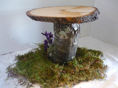 Inspiration photo. Rustic cake or dessert stand.