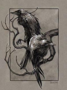 Huginn and Muninn by DanielGovar.deviantart.com on @deviantART: