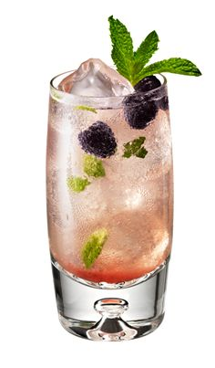 Riviera Mojito...Chambord Flavored Vodka, Limoncello, simple syrup, mint, rasp...topped with Perrier
