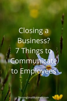Closing a Business – 7 Things to Communicate to Employees