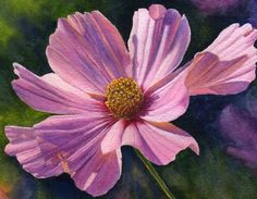 Pink cosmos, floral watercolor print of original painting by Cathy Hillegas, 11x14, pink, purple, blue, yellow, green, watercolor floral