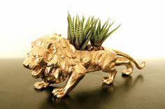 golden lion planter diy